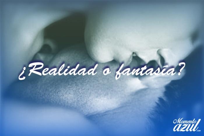 realidad o fantasia